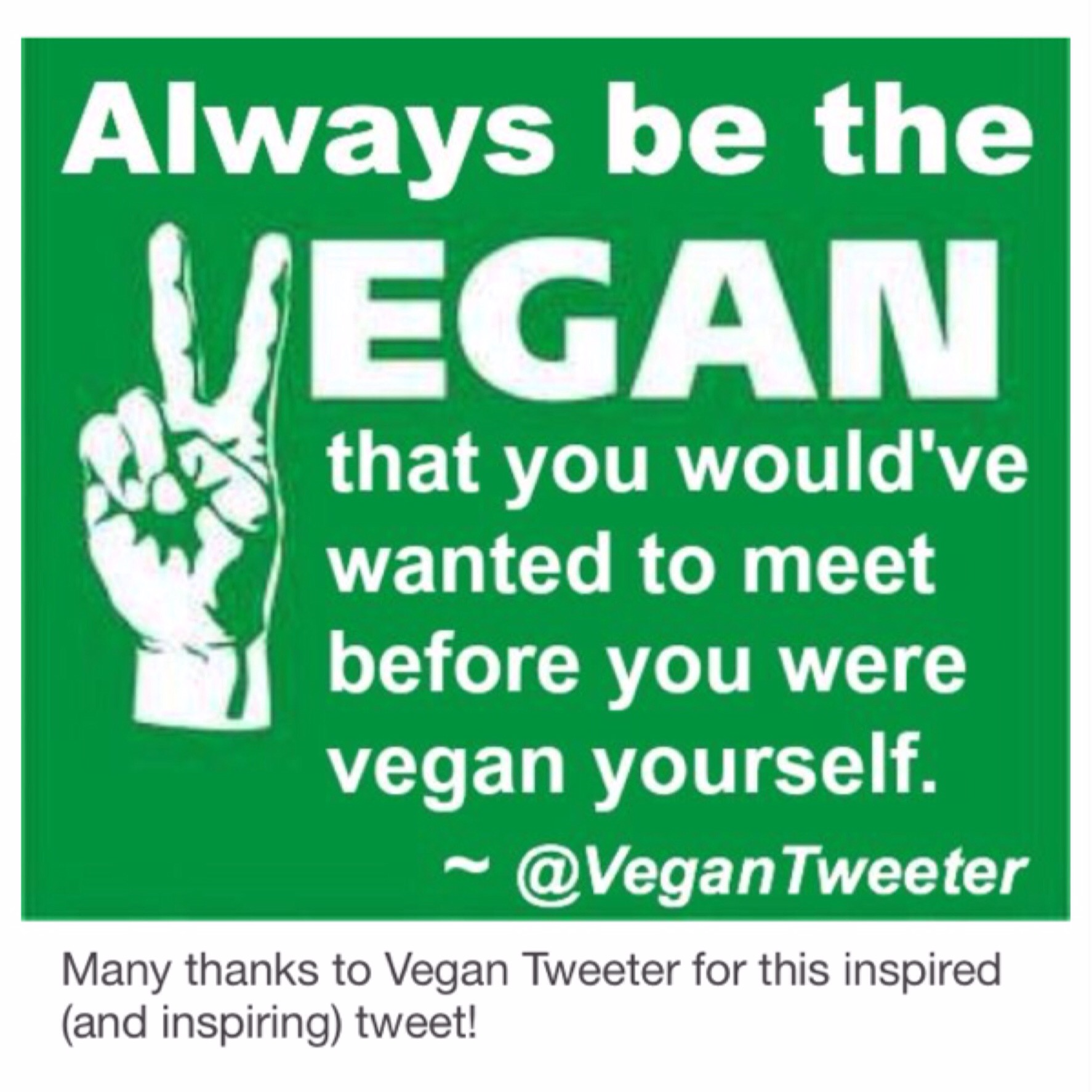 Vegan Quotes Alluring 19 Vegan Quotes Quotations That Make You Think  Veginspired